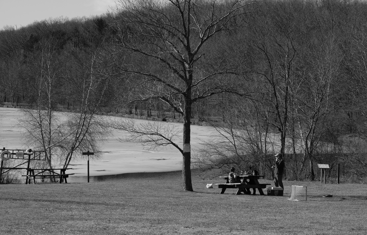 Picnic at Lake Francis
