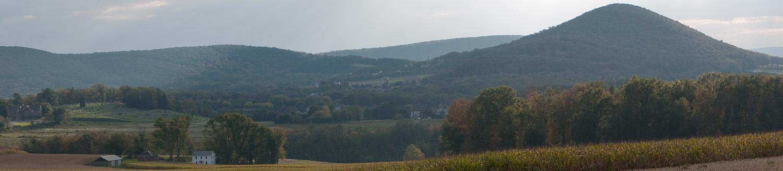 sugarloaf-farmcomp